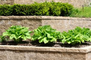 image of several tiers in a segmented retaining wall